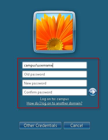 change password for windows domain